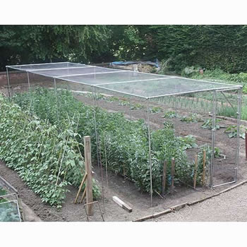 Image of Heavy Duty Fruit Cage 213cm high x 244cm wide x 488cm long with Butterfly Netting