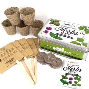Extra image of Nutley's Grow Your Own Herbs Kit Gift Tin
