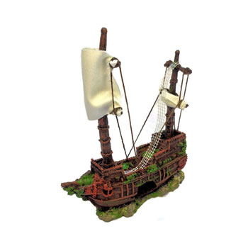 Image of Betta Medium Pirate Ship