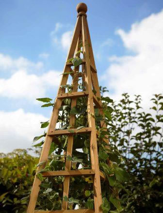 Image of Large (1.9m) Wooden Garden Obelisk