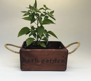 Extra image of Nutley's Small Oak Hand Made Bushel Box Herb Garden Rustic