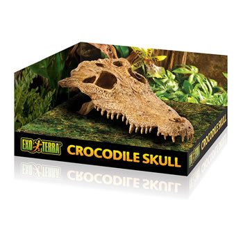 Image of Exo Terra Crocodile Skull