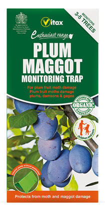 Image of Vitax Plum Maggot Monitoring Trap Protects Against Plum Fruit Moths