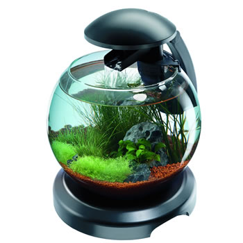 Image of Tetra Cascade Globe Aquarium