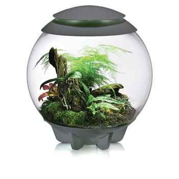Image of BiOrb Air Terrarium - Grey