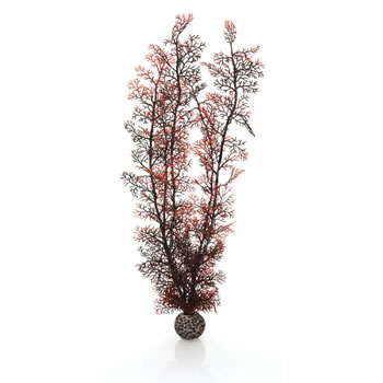 Image of BiOrb Crimson Sea Fan - X-Large