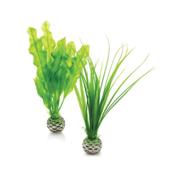 Image of BiOrb Easy Plants - Small