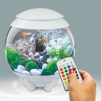 Image of BiOrb HALO 15 Aquarium with MCR - White