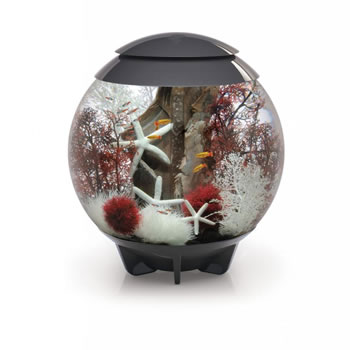 Image of BiOrb HALO 60 Moonlight LED Aquarium - Grey