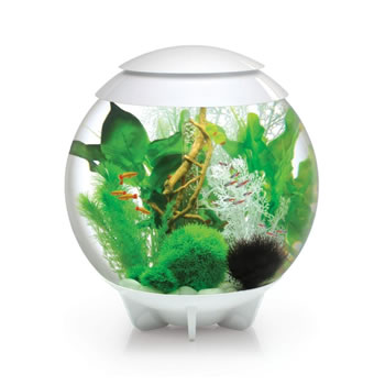 Image of BiOrb HALO 60 Moonlight LED Aquarium - White
