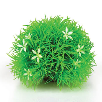 Image of BiOrb Topiary Ball With Daisies