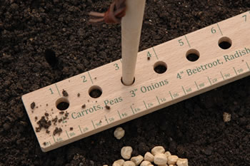 Image of Burgon & Ball Seed Plant Spacing Rule: For Grow Your Own Vegetables