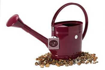 Image of Burgon & Ball 5-litre Metal Watering Can Outdoor Slim design burgundy red
