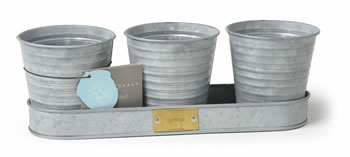 Image of Sophie Conran Herb Pots on a Tray windowsill herbs Zinc