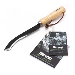 Image of Burgon & Ball Asparagus Cutting Harvesting Tool