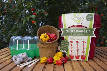 Image of GardenPop Chilli Growing Kit - With Seed Propagator
