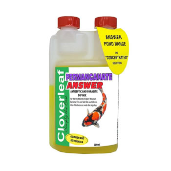 Image of Cloverleaf Permanganate Answer 500ml