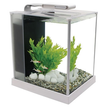 Image of Fluval Spec 10L White