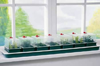 Image of Garland Super 7 Self-Watering Windowsill Seed Propagator