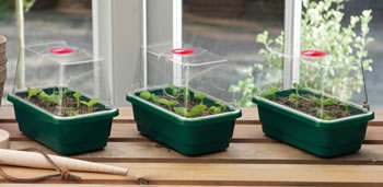 Image of 3 x Quality Garland Mini High-Dome Seed Propagators + Clear Vented Lid
