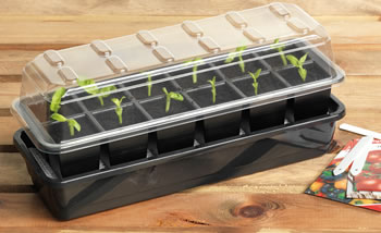Image of Garland 12 Cell Self-Watering Full Size Seed Propagator