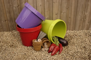 Extra image of Rainbow Vegetable Grow Your Own Kit