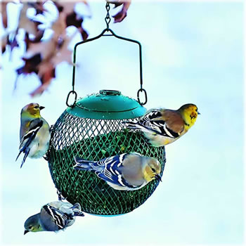 Extra image of No/No Green Seed Ball Wild Bird Feeder