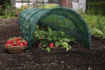 Image of 3 Haxnicks Easy Net Grow Tunnels