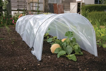 Image of Haxnicks Giant Easy Polytunnel Cloche