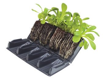 Image of 8 Books (32 Cells) Deep 12cm Rootrainers Root Trainers: For stronger plants