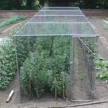 Image of Heavy Duty Fruit Cage 213cm high x 731cm wide x 244cm long with Butterfly Netting