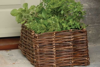 Image of Herb Planter