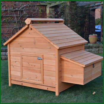 Extra image of Large House L Chicken Coop - 8 Bird Home Model