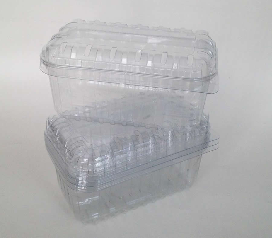 50 Nutley S 250g Clear Fruit Punnet Containers Recyclable