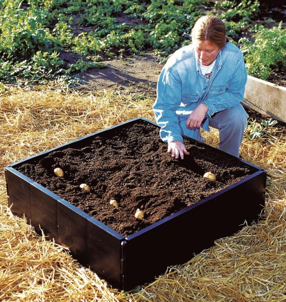 Reviews for garland raised grow bed 3ft x 3ft for Gardening 4 less reviews