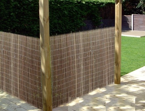Garden Screening Ideas Trellis