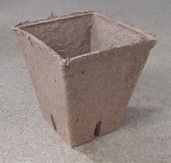 Image of 10 Jiffy Square Peat-Free Biodegradeable Plant Pots 9cm plant straight into soil