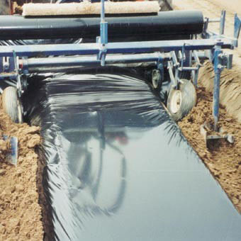 Image of Biodegradeable Weed Control Mulch Film - 50m x 1.5m