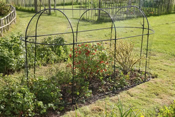 Image of Haxnicks Long Steel Garden Cage