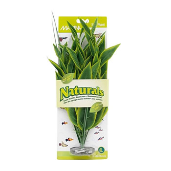 Image of Marina Naturals Green Dracena Silk Plant - Large