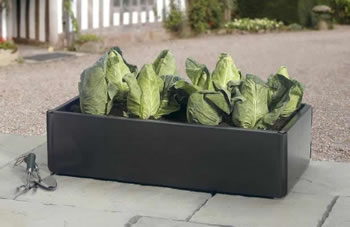 Image of Mini Raised Bed - Special Offer Pack of 2