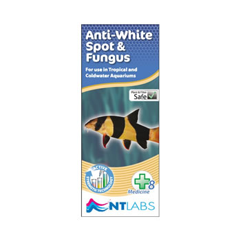 Image of NT Labs Aquarium Anti White Spot & Fungus 100ml