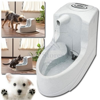 Image of PetSafe Drinkwell Mini - Drinking Fountain