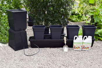 Extra image of Quadgrow Planter - With Holiday Watering Kit