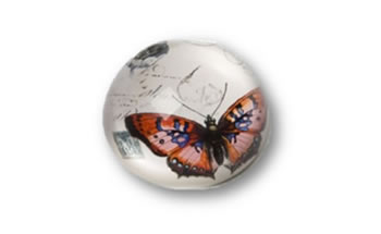 Image of Butterfly Paper Weights