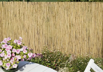 Image of 1m tall x 5m long reed screening fence - for gardens, balconies, shade etc