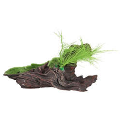 Small Image of Fluval Black Driftwood Replica With Moss 18cm