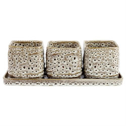 Small Image of Triple Ceramic Houseplant & Herb Pot Cover Set with Tray
