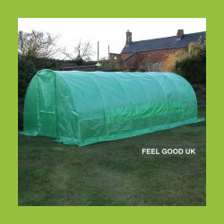 Small Image of 6m x 3m Polytunnel