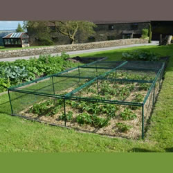 Small Image of Standard Strawberry Cage 46cm x 244cm x 366cm with Bird Netting